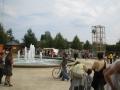 Cage à grimper avec tyrolienne au-dessus d'une fontaine