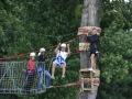 Adultes sur un parcours aventure en forêt
