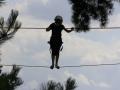 Enfant sur un parcours aventure dans les arbres