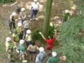 Briefing du parcours aventure dans les arbres