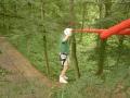 Pont de singe dans les arbres